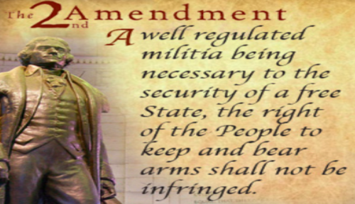 2nd_amendment_not_be_infringed.png