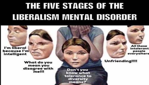 5_stages_of_lib_mental.jpg