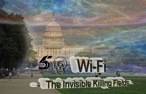 5g_invisible_killing_fields.jpg