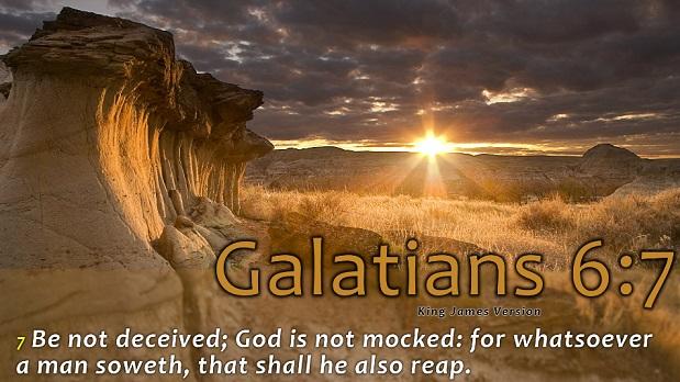 BibleReapAndSow2.jpg