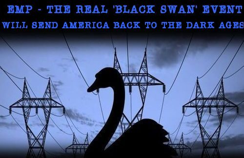 EMP_the_real_black_swan.jpg