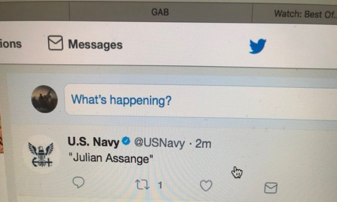 NavyTweetsAssange.jpg