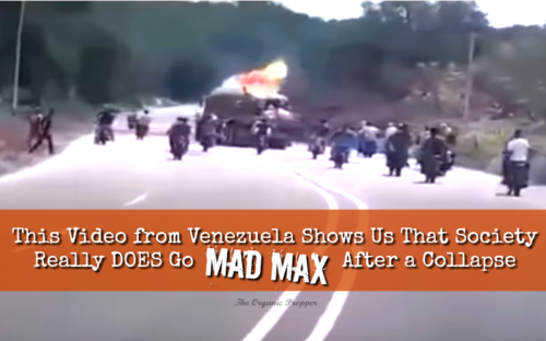 VZ_mad_max.png