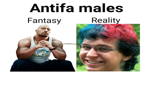 antifa_fantasy_v_reality.png