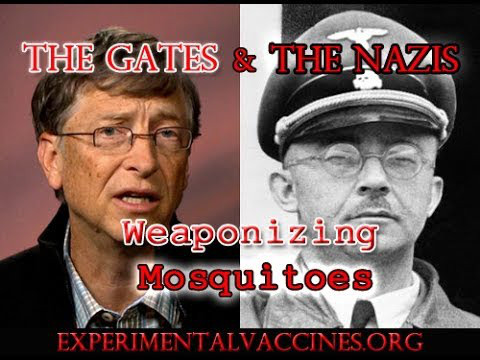 bill_gates_weaponizing_mosquitoes.jpeg