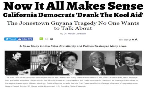 The Secret History of Dianne Slimestein Dems_drank_kool_aid
