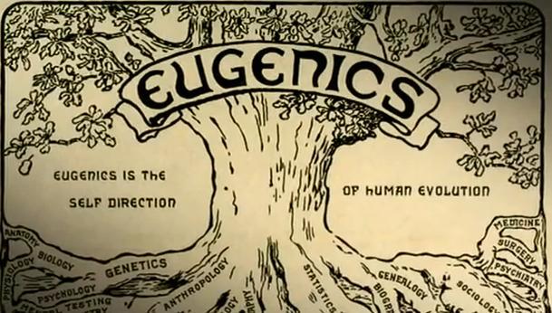eugenics-tree.jpg