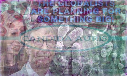 globalists_planning_something_big.jpg