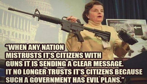 govt_guns_feinstein.jpg