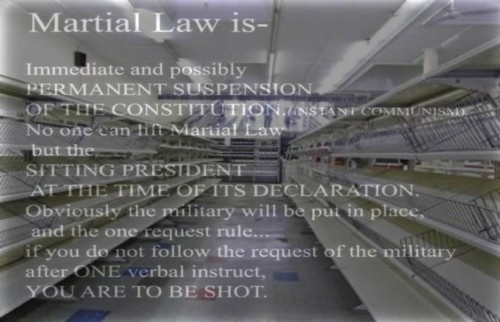 martial_law_in_america.jpg