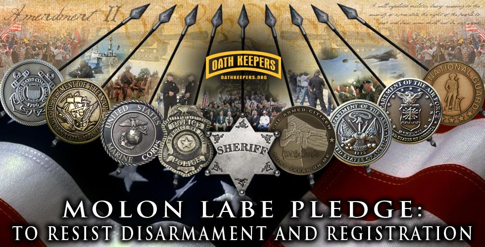 http://allnewspipeline.com/images/molon-labe-pledge-hdr1.jpg