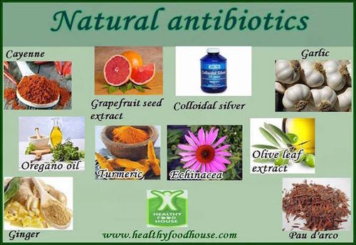 natural_antibiotics.jpg