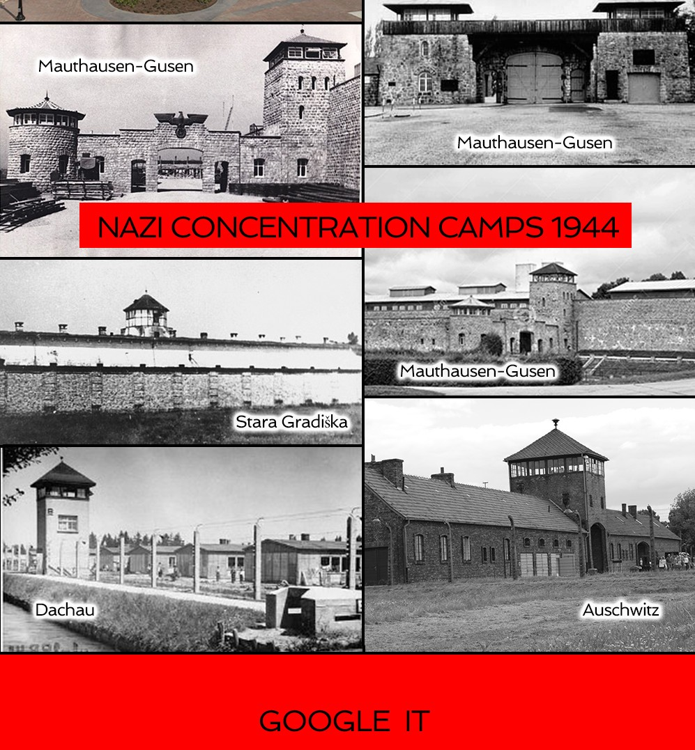 When are fema camps going to be used