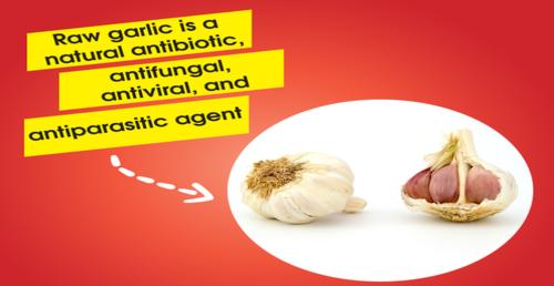 raw_garlic_kill_all.png