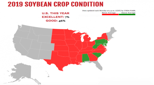 soybean_crop_conditions.png