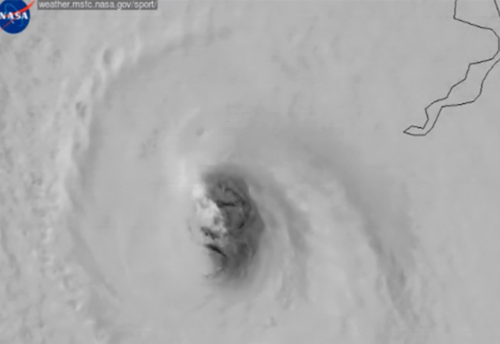 the_face_of_Irma.png