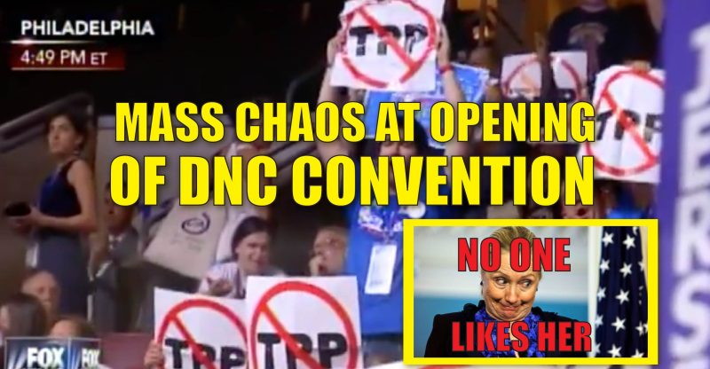 xChaos-At-DNC-01-800x416.jpg.pagespeed.ic.OHbhcF2zOt.jpg