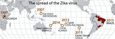 zika-spread-larkis-washington-post.jpg